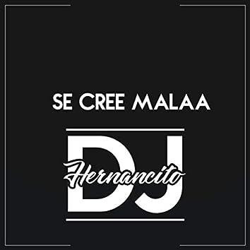se cree malaa (Remix)