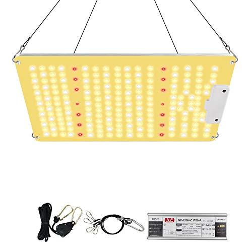 Corayer Pflanzenlampe Led,1000W Led Grow Lampe vollspektrum, Pflanzenlicht Full Spectrum mit 222 LEDs,Grow Light für Zimmerpflanzen Gemüse und Blumen