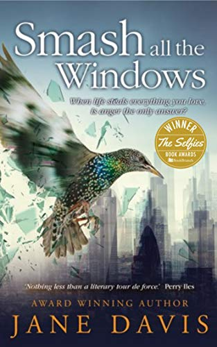 Smash all the Windows: Winner of The Selfies (Best independent adult fiction author) 2018 (English Edition)