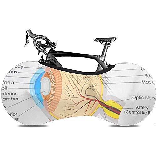 L.BAN Sweet-Heart Fahrrad Radabdeckung, Protect Gear Reifen Fahrradabdeckung - Augapfel des Diagramms Anatomie des menschlichen Auges Ophthalmologie Medizinische Organphysiologie