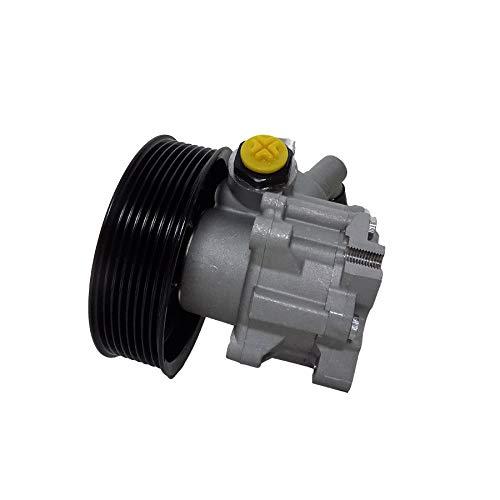 Servopumpe Hydraulikpumpe P1033HG von ATG, Zertifiziert, 1 Jahr Garantie