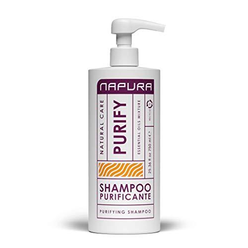 Napura Purify Shampoo purificante per cuoio capelluto sano 750ml - Purificante Detergente per capelli e purifica i capelli - zero prurito, irritazione - effetto antisettico e antibatterico