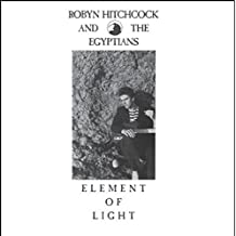 robyn hitchcock element of light