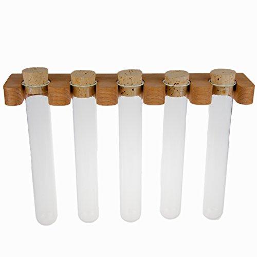 Rasch Design Gewürzregal Gewürzhalter mit Reagenzgläsern Wand Montage 120ml Gläser Reagenzglas | Massivholz Holz (Buche 120ml pro Glas)