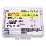 BOJACK 6x30 mm 0,5 A 250 V 0,24x1,18 pollici F0,5AL250V 0,5 amp 250 volt Fusibili in vetro a soffio rapido (confezione da 18 pezzi)