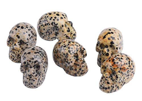 AMOYSTONE 6pc Natural Gemstone Carved Human Skull Statues Figurines Spotted Jasper for Collector 1.5