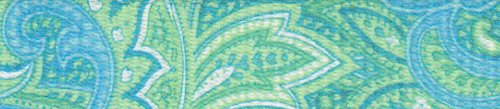 Country Brook Design 1 Inch Green Paisley Polyester Webbing, 10 Yards