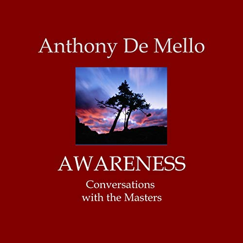 Awareness audiobook cover art