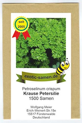 Petersilie kraus - Bienenweide - Gärtnerstolz - Petroselinum - 1500 Samen