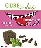 Dentifrice Solide Bio au Beurre de Coco et Menthe Poivrée Plusieurs Mois d'Utilisation - Nouveauté fin 2019 - Mumure Mentholé