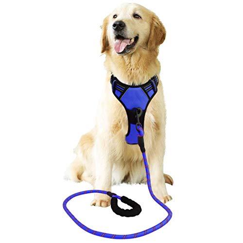 Raining Pet Hundegeschirr Hunde Geschirr für Große Hunde Anti Zug Geschirr No Pull Sicherheitsgeschirr Kleine Mittlere Hunde Brustgeschirr Blau XL