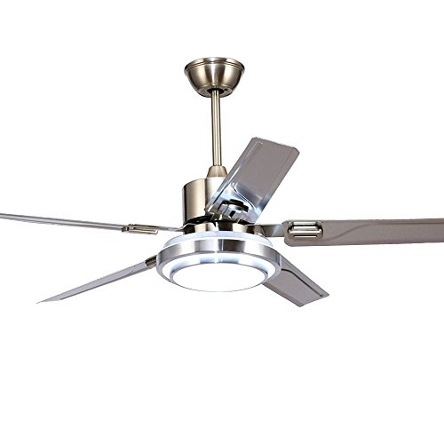 RainierLight Modern Ceiling Fan 5 Stainless Steel Blades Remote Control LED 3 LED Changing Light White/Warm/Yellow for Indoor Mute Energy Saving Electric Fan 48inch