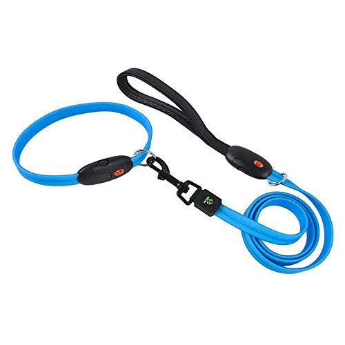 Collar para Perro con led de Seguridad Siqi - USB Recargable con luz Intermitente Resistente al Agua-Blue||M