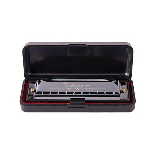 Harmonica 10 Holes 20 Tunes Mouth Organ Blues Deluxe Harmonica, Key of C for Beginner, Adults, Kids Gift, Black