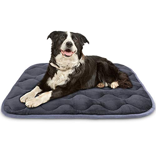 AIPERRO Dog Bed Crate Pad Soft Plush Kennel Cushion Mat Machine Washable Anti-Slip Pet Bed for Small Medium Large Dogs and Cats Sleeping, 35 x 23 Inch