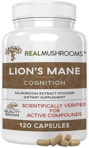 Lions Mane Mushroom Cognition Capsules (120 Capsules) Lions Mane Mushroom Powder Extract Capsules | Brain Supplement, Brain Vitamins, Focus Supplement