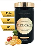 Pure Cane Natural Pre Workout Powder for Men & Women - No Artificial Sweeteners, Organically Sweetened, All Natural Flavors - Tropical Fruit Smoothie