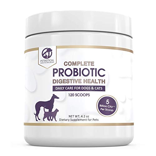 Petastical Probiotics for Dogs and Cats, 5 BILLION CFU Max Strength Canine Feline Probiotic Powder for Digestive Health, Acidophilus Pet Supplement for Diarrhea Constipation Skin Itching Gas