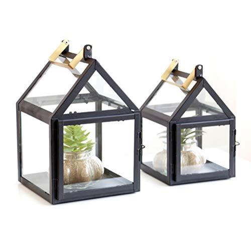 NONE Caja de Vidrio para Terrario Plantador de Casa Contenedor Contenedor Caja de Presentación para Plantas Suculentas Flores Orquídeas Flor de Musgo (Tamaño L)