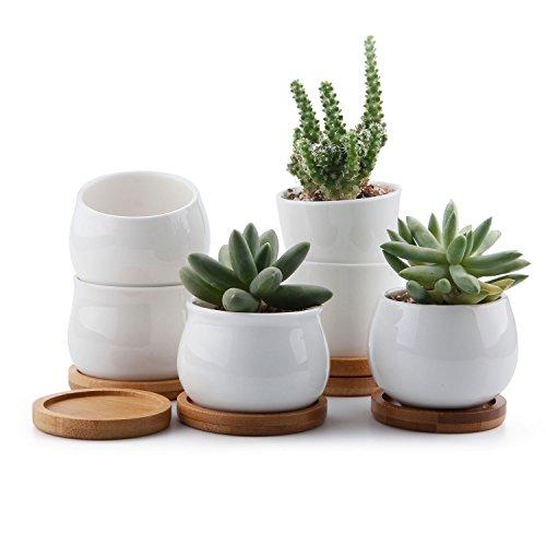 T4U 7cm Cerámico Colección Blanca NO.31 Suculento Maceta Cactus Flor Macetas Envase Plantas con Bandejas de Bambú Conjunto de 6