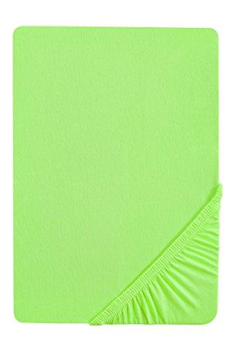 #27 biberna Jersey-Stretch Spannbettlaken, Spannbetttuch, Bettlaken, 140x200 – 160x200 cm, Hellgrün