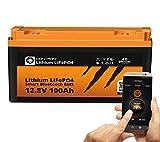 LIONTRON LiFePO4 12V 100Ah Lithium Batterie mit Smart Bluetooth BMS - Versorgungsbatterie für...