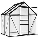 vidaXL Gewächshaus UV-beständig Wärmeisolierend Treibhaus Tomatenhaus Frühbeet Garten Pflanzenhaus Gartenhaus Anthrazit Aluminium 2,47m²