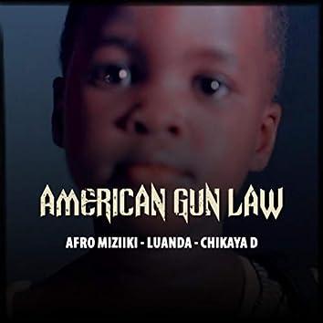 American Gun Law