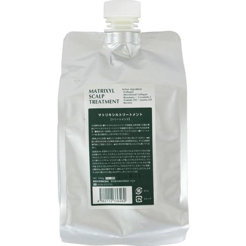 巻き取り建設一貫性のない香栄化学 マトリキシル スキャルプトリートメント レフィル 1000g