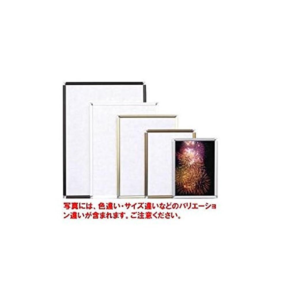 図スタイルパイBW74411 アルミフレームポップフレーム画用紙八ッ切
