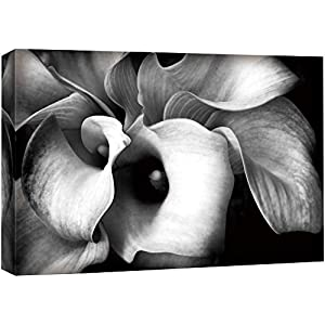 wall26 Canvas Wall Art A Bouquet of Calla Lily Flowers Floral Plants Photography Realism Modern Closeup Dramatic Black and White for Living Room, Bedroom, Office – 24×36 inches