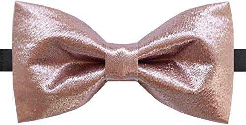Pajarita formal Pasta de alubias lazo de seda corbata de lazo de unió