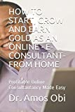 HOW TO START, GROW AND EARN GOLD AS AN ONLINE - E-CONSULTANT- FROM HOME: Profitable Online Consultantancy Made Easy: 1 (Consultancy Gold-mine)