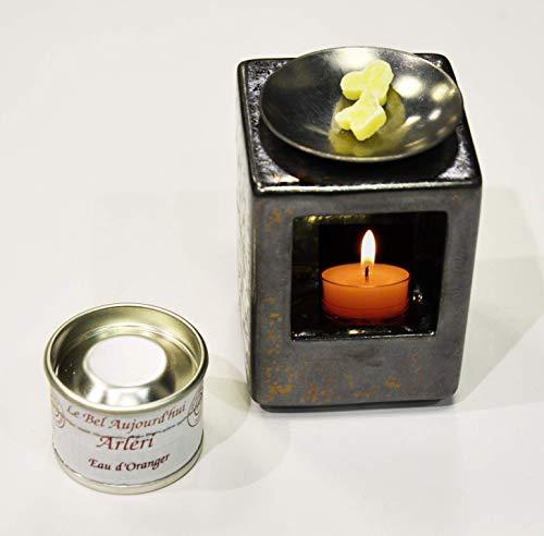 Le Bel Aujourd'hui - Arleri (Ambre) Parfum d'Ambiance Artisanal Naturel et Bio - Concentrés Solides de Parfum pour brûle Parfums Arcs en Terre – Plus Design Qu'Une Bougie parfumée !