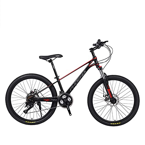 Axdwfd Kids Bike High-carbon Steel Variable Speed Bicycle 24 Inch Bicycle with Rear Bracket Design for Students, Children and Adolescen Bicycle (Color : A)