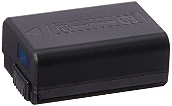 Best sony np fw50 battery Reviews