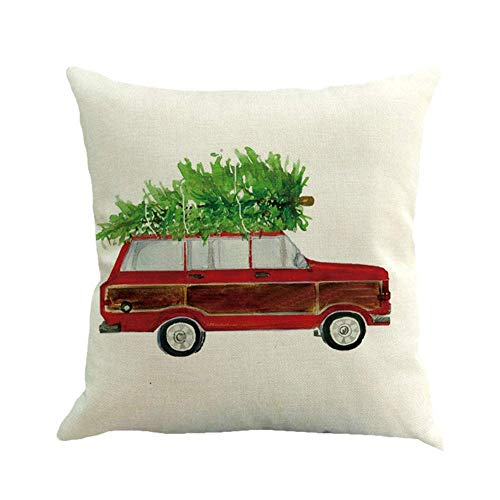 Preisvergleich Produktbild JoyRolly Dekokissen Abdeckung Platz Kissenbezug Gedruckt Lendenkissenbezug für Schlafzimmer Sofa Auto Büro Color-4