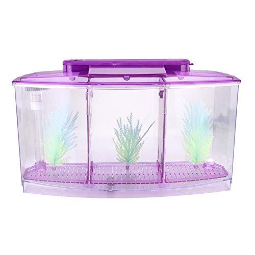 Pssopp Caja de Aislamiento para Acuario Criadero de cría de acrílico Incubadora de Peces pequeños Mini pecera con Tres divisiones y luz LED(Púrpura)