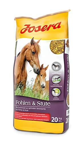 JOSERA Fohlen & Stute (1 x 20 kg) | Premium Pferdefutter für eine optimale Versorgung | haferfrei | energiereiches Müsli für Stuten und Fohlen | 1er Pack