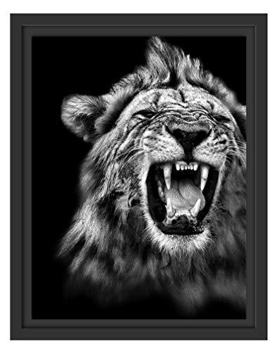 Picati Dark Brüllender Löwe Schwarz-Weiss im Schattenfugen Bilderrahmen/Format: 38x30 / Kunstdruck auf hochwertigem Galeriekarton/hochwertige Leinwandbild Alternative