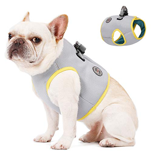 Dog Cooling Vest Harness, Breathable Cool Pet Cooler Vest for Outdoor Training Walking Hiking, Summer Cooling Jacket for Small Medium Large Dogs, Small