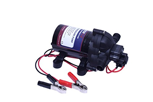 Eccotemp EccoFlo Diaphragm 12V Pump and Strainer