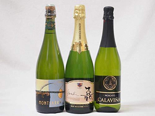 フルーツ甘口ワイン3本セット 嘉スパークリングスウィート マスカットオレンジ 甘口スパークリングワイン モンサラカバセミセック(スペイン)カラヴィニャモスカート(スペイン)750ml×3本