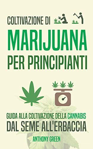 Coltivazione di marijuana per principianti: Guida alla coltivazione della cannabis - Dal seme all'erba (Instituto Cervantes Vol. 1) (Italian Edition)