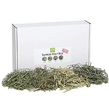 Small Pet Select-Sampler Box 2ND Cutting 3RD Cutting Timothy Hay Oat Hay & Orchard Hay