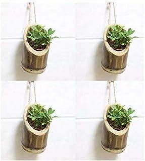 COIR GARDEN Plastic Hanging Planter 4 Pieces