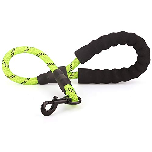 Voopet 2 Feet Nylon Dog Leash