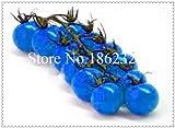 Generic Fresh 100 pcs SEMILLA de tomate orgánico vegetal para plantar azul