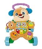 Fisher-Price Ríe y aprende Andador Perrito Primeros Pasos, juguete con actividades, luces y sonidos, regalo para bebés +6 meses (Mattel HBW52)
