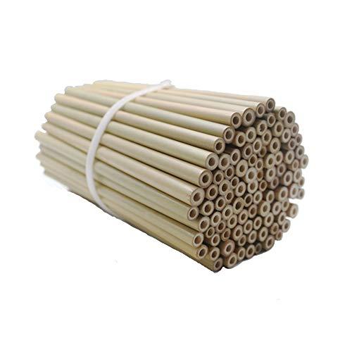 Super Idee 100 Stück Bambusröhrchen Füllung Fertigröhrchen für Insektenhotel Wildbienenhotel 20cm Insektenhaus Wildbienen Nisthilfe Wildbienenhaus Bienenhotel wasserdichte Glatte Innenseite